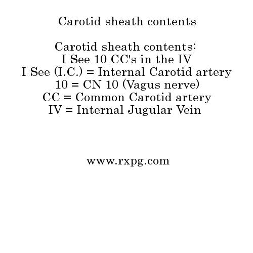 Carotid sheath contents Mnemonics