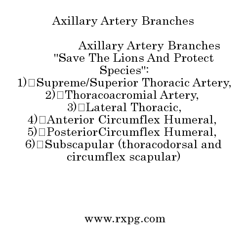 branches of axillary artery pdf